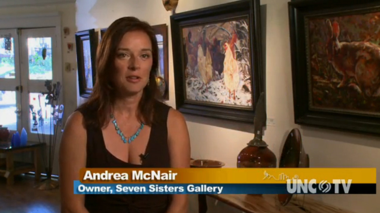 Seven Sisters Gallery Video